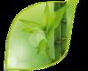 Носки NordKapp Premium Bamboo Flaten 494